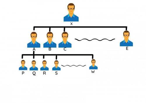 Universal Plan Structure