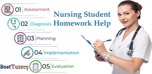 Nursing Student Homework Help