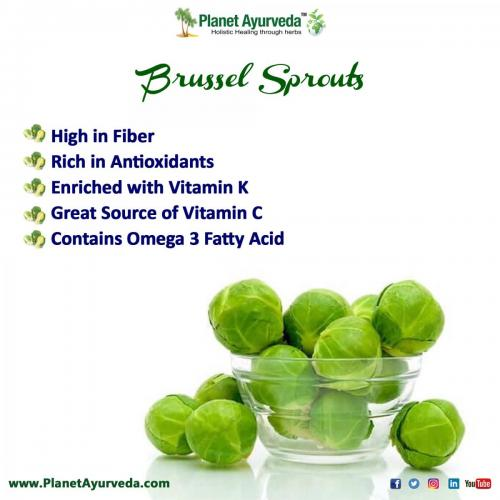 Health Benefits of Brussel Sprouts