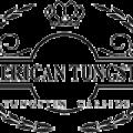 American Tungsten