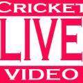 Cricket Live Video