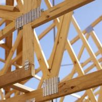 Frames and Trusses