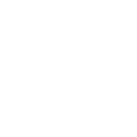 1xbetth88 Online