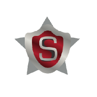 Stone Security Services