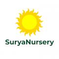 Surya Nursery Chandigarh